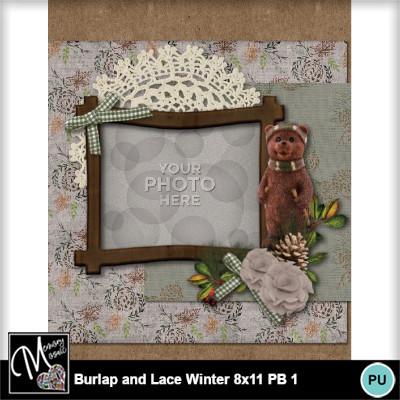 Burlap_lace_winter_pb_8x11-004