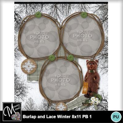 Burlap_lace_winter_pb_8x11-007