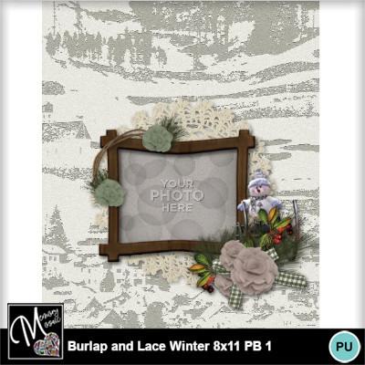 Burlap_lace_winter_pb_8x11-010