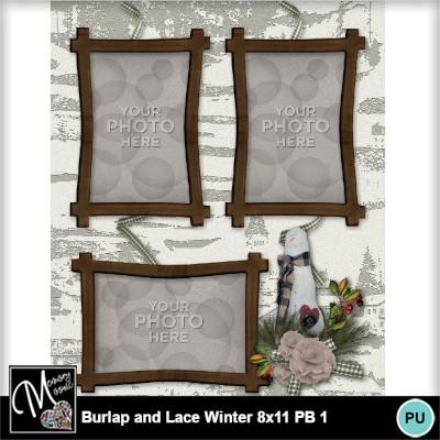 Burlap_lace_winter_pb_8x11-011
