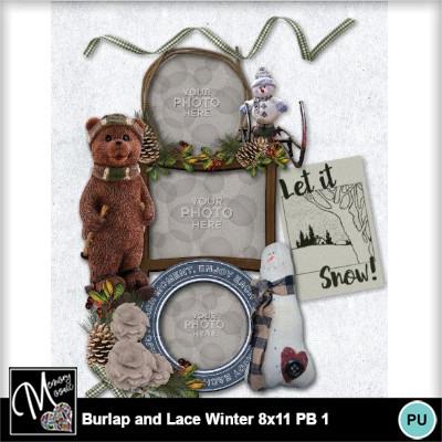 Burlap_lace_winter_pb_8x11-014