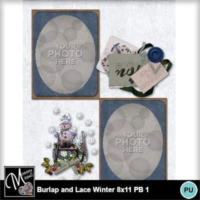 Burlap_lace_winter_pb_8x11-015