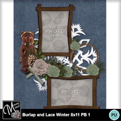 Burlap_lace_winter_pb_8x11-019
