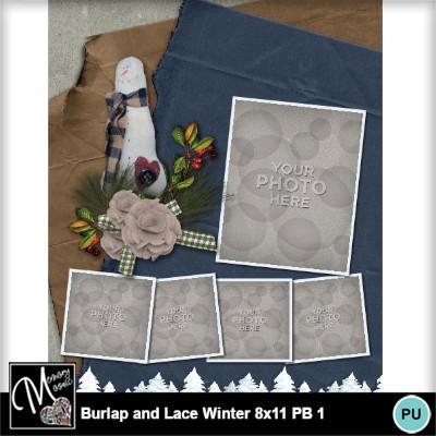 Burlap_lace_winter_pb_8x11-020