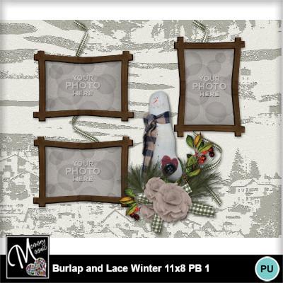 Burlap_lace_winter_pb11x8-011