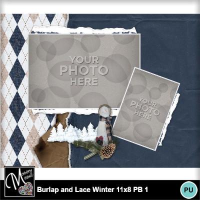Burlap_lace_winter_pb11x8-017