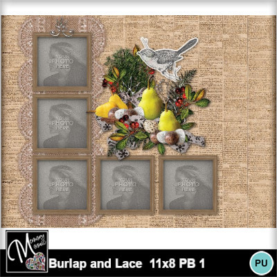 Burlap_and_lace_11x8_pb_1-005