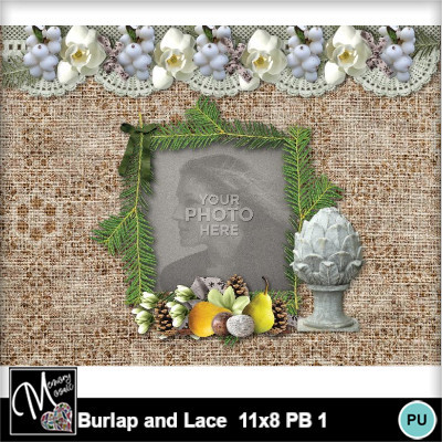 Burlap_and_lace_11x8_pb_1-008