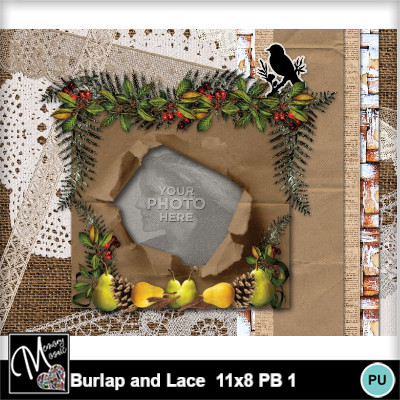 Burlap_and_lace_11x8_pb_1-010