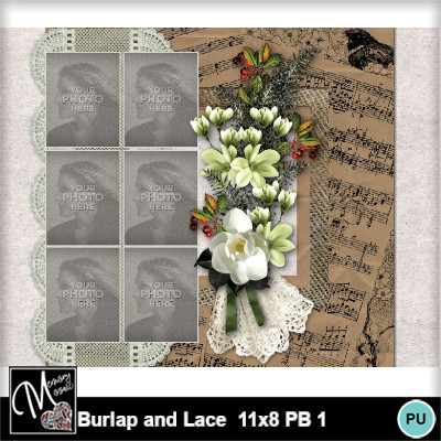 Burlap_and_lace_11x8_pb_1-015