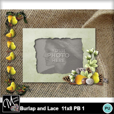 Burlap_and_lace_11x8_pb_1-016