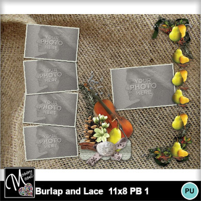Burlap_and_lace_11x8_pb_1-017