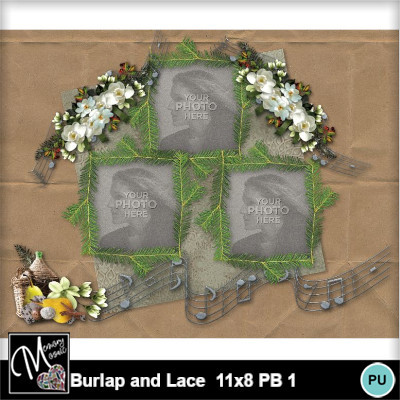 Burlap_and_lace_11x8_pb_1-019