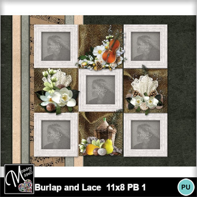 Burlap_and_lace_11x8_pb_1-020