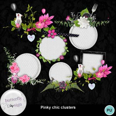 Butterflydsign_pinkychic_clust_pv_memo