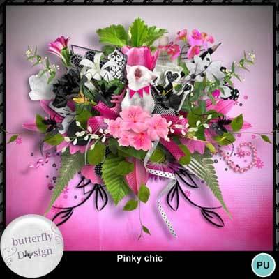 Butterfly_pinkychic_pv_memo