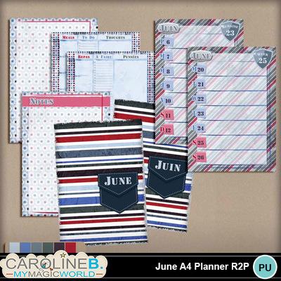June-a4-planner-r2p_1