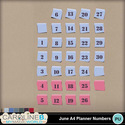 June-planner-numbers_1_small