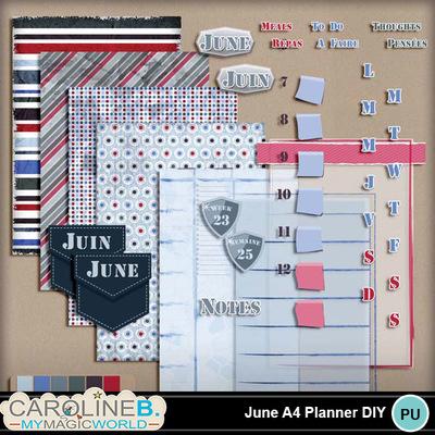 June-a4-planner-diy_1