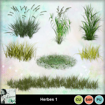 Louisel_cu_herbes1_preview