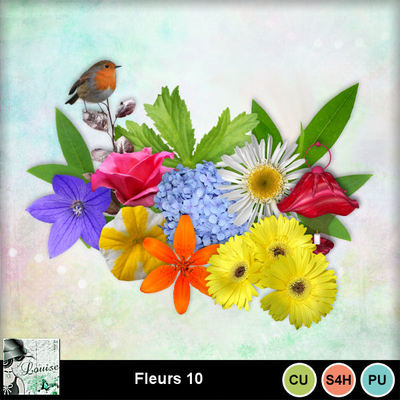 Louisel_cu_fleurs10_preview