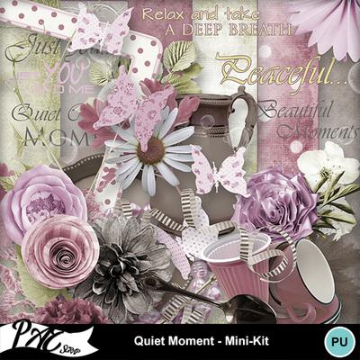 Patsscrap_quiet_moment_pv_mini_kit