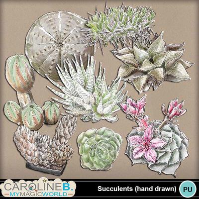 Succulents_1