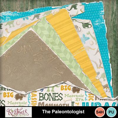 Thepaleontologist_shabbies