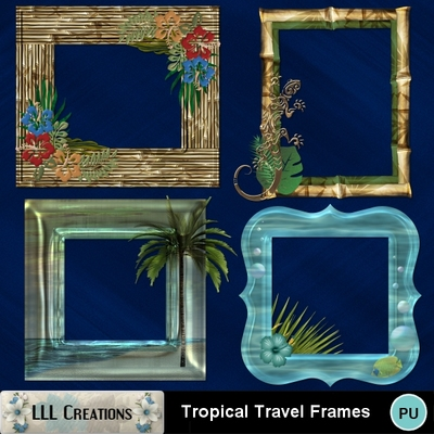 Tropical_travel_frames-01