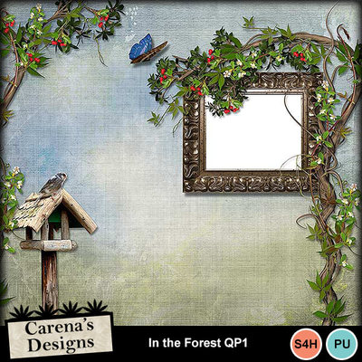 In-the-forest-qp1