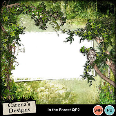 In-the-forest-qp2