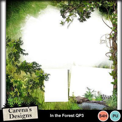 In-the-forest-qp3
