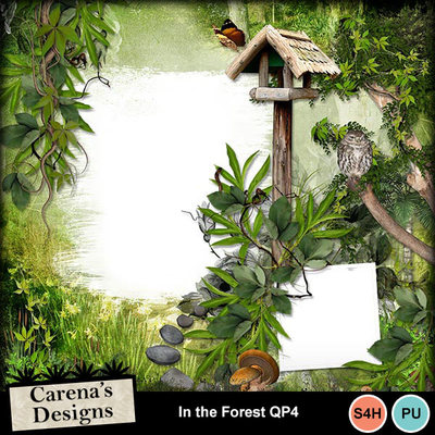 In-the-forest-qp4