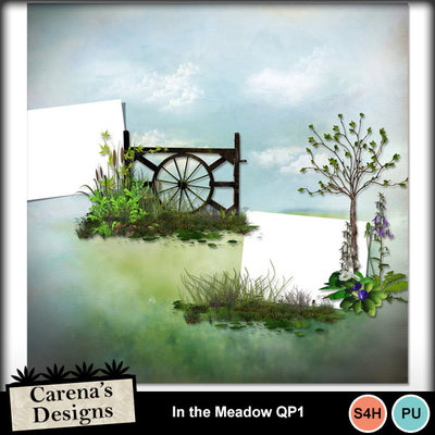 In-the-meadow-qp1