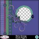 Berrygrungy_qp4_small