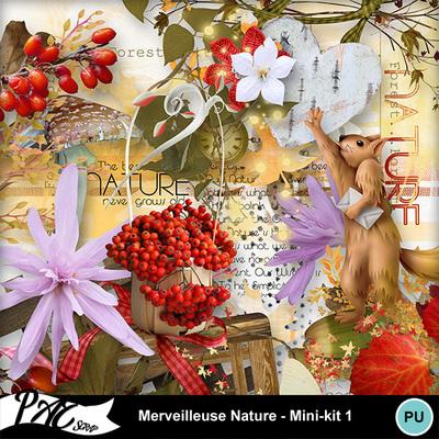 Patsscrap_merveilleuse_nature_pv_mini_kit1