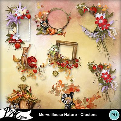 Patsscrap_merveilleuse_nature_pv_clusters