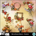 Patsscrap_merveilleuse_nature_pv_clusters_small