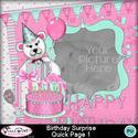 Birthdaysurpriseqp1-1_small