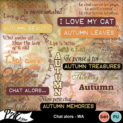 Patsscrap_chat_alors_pv_wa
