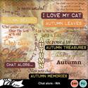 Patsscrap_chat_alors_pv_wa_small