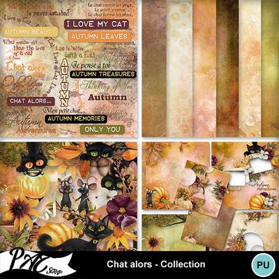 Patsscrap_chat_alors_pv_collection