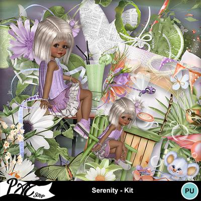 Patsscrap_serenity_pv_kit