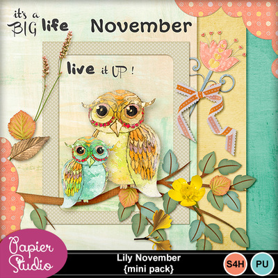 Lily_november_mini_pack