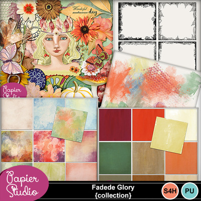 Faded_glory_collection