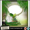 Pandabamboo-qp1_small