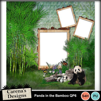 Panda-in-the-bamboo-qp6