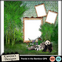 Panda-in-the-bamboo-qp6_small