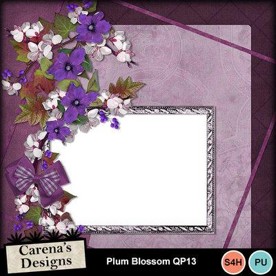 Plum-blossom-qp13