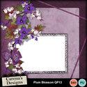 Plum-blossom-qp13_small